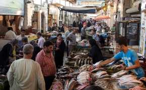 Fish for food security and jobs in Egypt